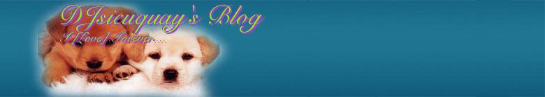 DJsieuquay's Blog